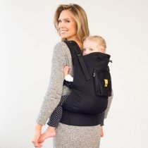 All Toddler Carriers